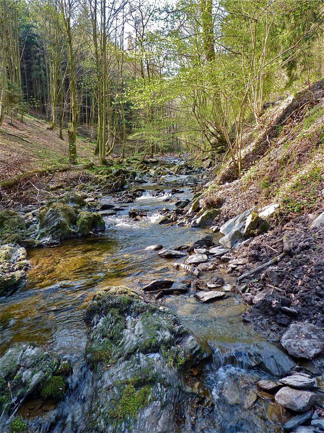 Eifelbach
