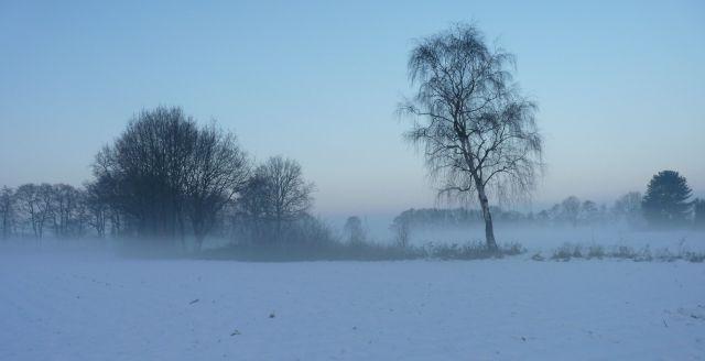 Nebelgeburt